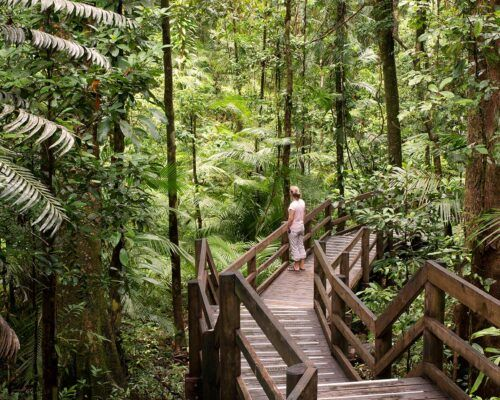 cairns-accommodation-footer2